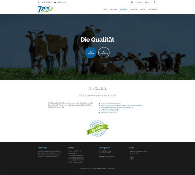 7gün - Website, Qualität