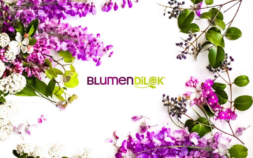 Blumendilek - Logo Design